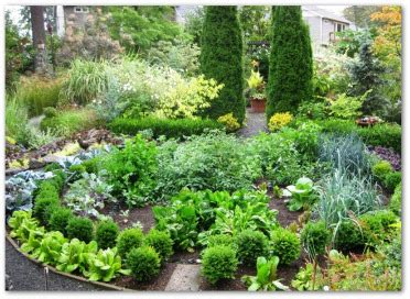 Ornamental Vegetable Garden Plants Ideas Pictures Ornamental Vegetable Garden Design