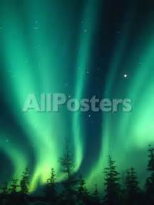 borealis or northern lights alaska usa