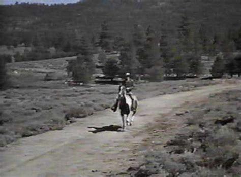 bonanza horse biographies cochise