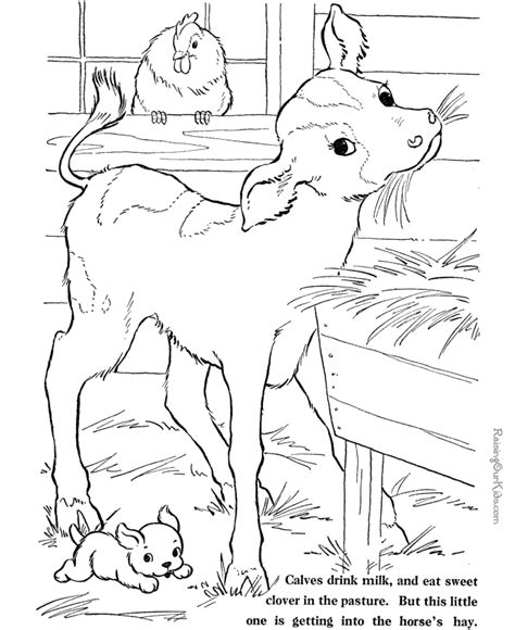 farm animal coloring sheets pictures nanopics pictures