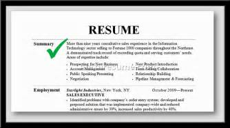 Professional Summary Examples For Resume Professional Summary Example For Resume Alexa Resume