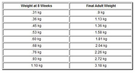 when do yorkies stop growing puppy weight chart puppy weight chart for yorkies yorkies weight ratelco