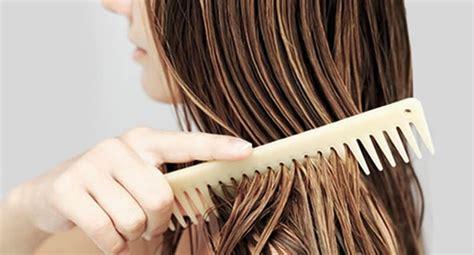 Sho Kuda Yang Cepat Memanjangkan Rambut tips alami merawat rambut cepat panjang agen sho kuda