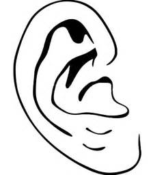 ear coloring page ear pictures for clipart best