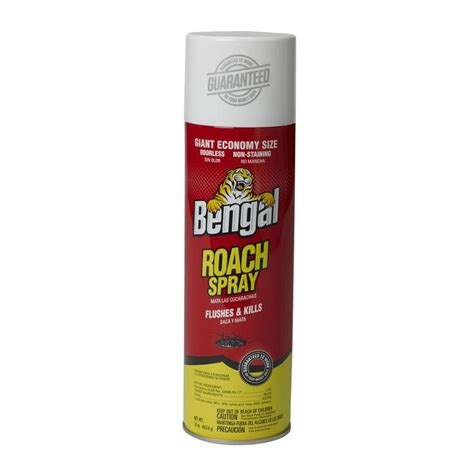 best insecticide for roaches shop bengal 16 oz roach spray at lowes