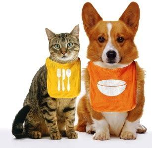 alimentos mascotas expediente joanfliz piensos para animales fuente segura