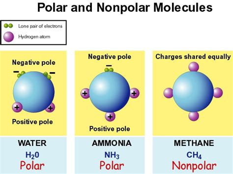 which electron dot diagram represents a polar molecule chemistry time