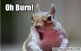 Burn Meme - oh burn squirrel