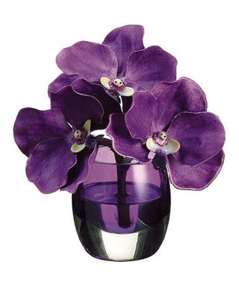 Vanda Vase by Mauve Vanda Orchid Vase Arrangement Glass Vase Mauve