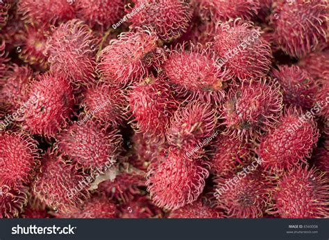 fruit similar to lychee lychee fruit stock photo 6560008 shutterstock