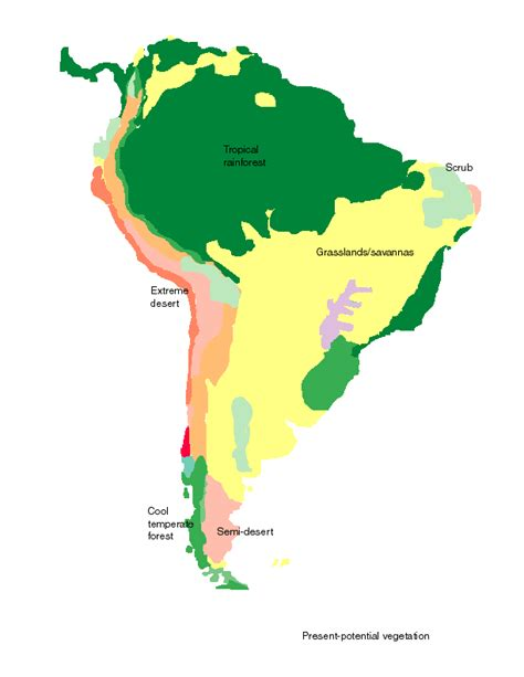 south america map basin labeled rainforest map clipart best