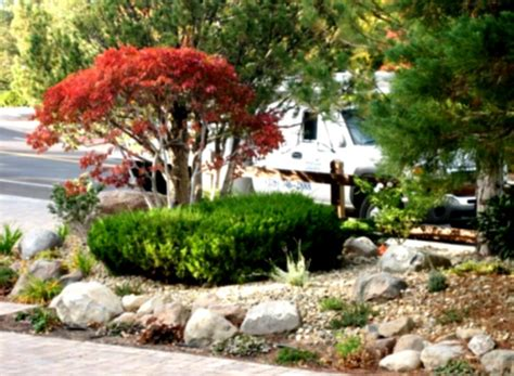 rock gardens rock garden ideas to make your looks more home