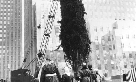 the history of the rockefeller center christmas tree a