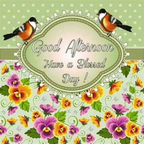 a day afternoon afternoon a blessed day pictures photos and images for