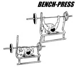 bench presses exercise bench press barbell bench press exercise
