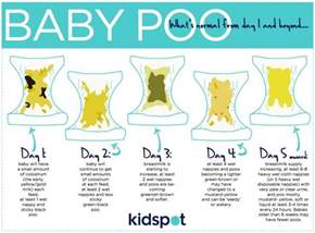 newborn stool color what you should about baby poo kidspot