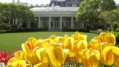 white house garden tour white house garden tours 2017 spring fall