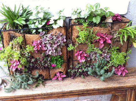 imagenes de jardines en otoño jardines verticales para la pared 161 aprovecha tus espacios