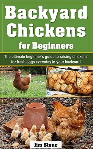 Backyard Chickens For Beginners Borrow Backyard Chickens For Beginners The Ultimate Beginner S Guide To Raising Chickens For