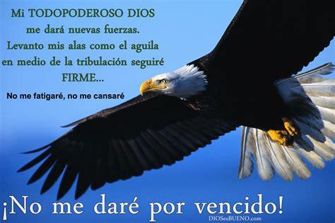 imagenes cristianas hd imagenes con frases cristianas para amigos youtube