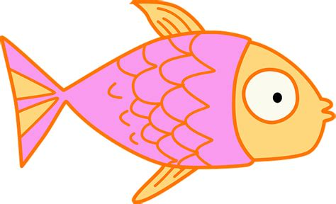 clipart pesce free illustration fish clip pink