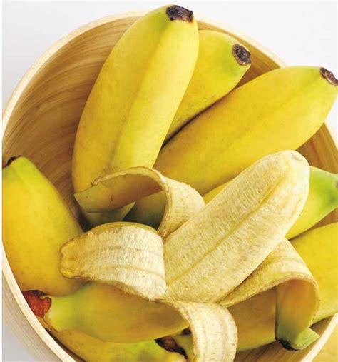 La Bananais Pisang Sale 39 banana mignon sale pepe