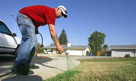 spray painter course how to start a lawn painting business