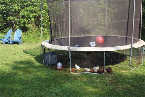 covert chicken coop modern homesteading mother earth news
