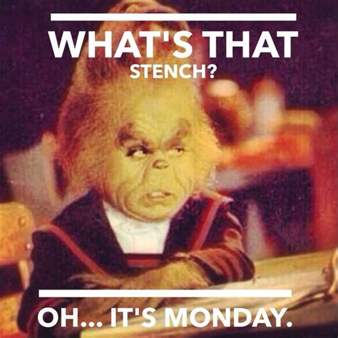 Monday Memes Funny - grinch monday meme monday pinterest funny mondays
