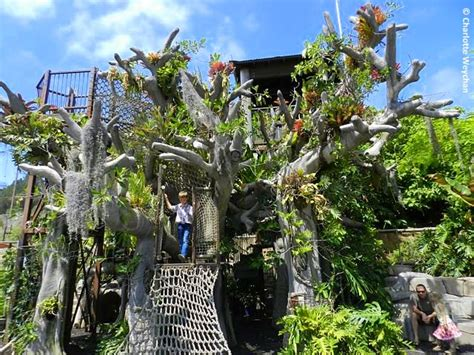 San Diego Botanic Garden The Galloping Gardener San Diego Botanic Garden With Less Than 11 Quot Of A Year The