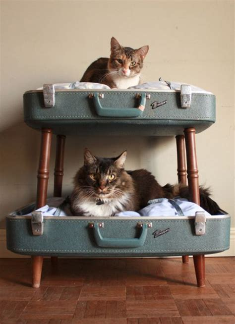 cats beds 25 warm and cozy cat beds home design and interior