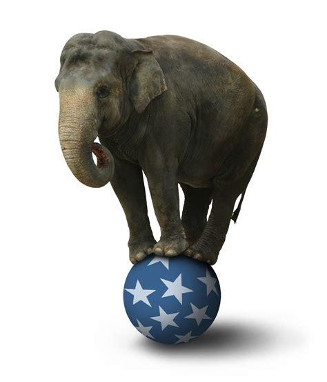 Circus Elephant Rage Circus Elephant Stand
