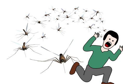 dramafire virus mosquito minus seotoolnet com