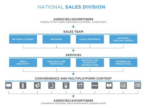 sales team structure template sales organization quebecor media sales