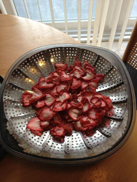 freeze drying at home 178 best images about diy mres and backpacking meals on