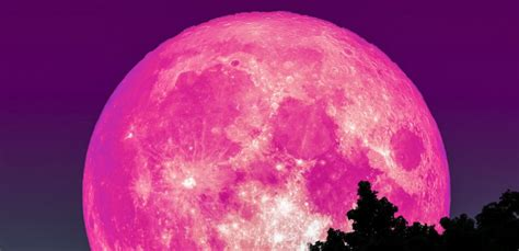 pink moon april april pink moon is here this is how to see the full moon