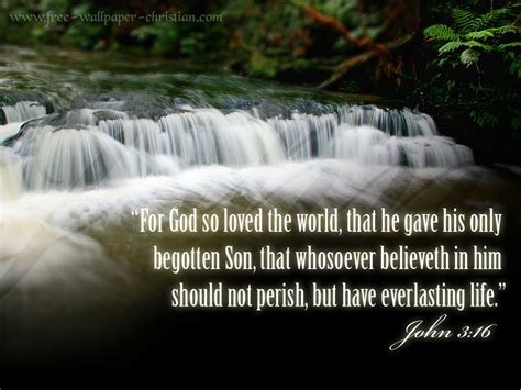 Paul Bible Quotes Quotesgram Bible Quotes