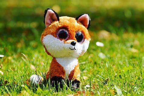 622222068592 Artsi Glitter Pets Squirrel images gratuites la nature herbe prairie doux fleur animal mignonne faune 233 cureuil