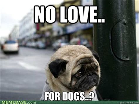 Depressed Pug Meme - sad pug is so sad memes quickmeme