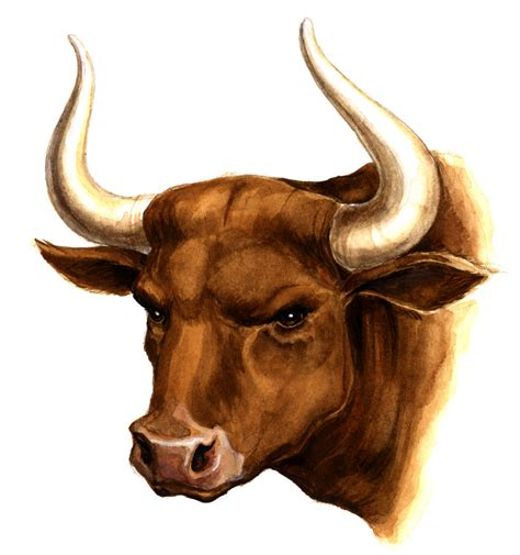 The Pull bulls and bears gold and silver investments co uk