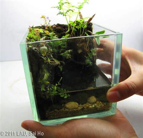 gullivers hands   travel  lilliput biotop