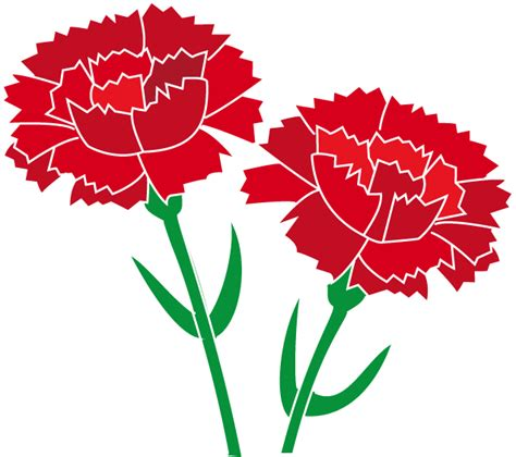 carnation flower tattoo clip art library