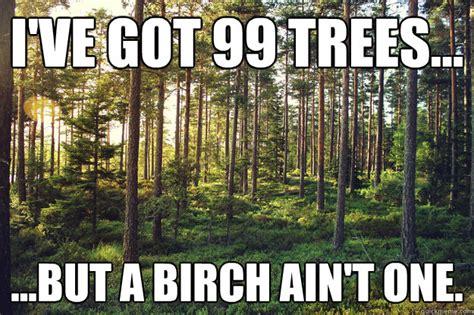 Tree Meme - tree puns punpedia