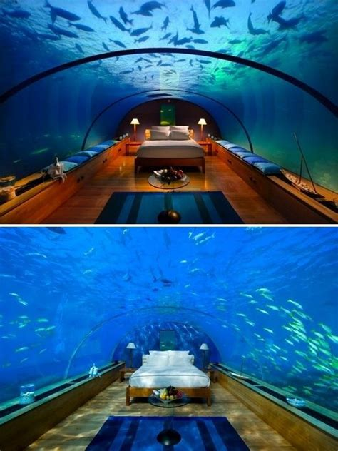 underwater bedroom in maldives sleep underwater in maldives for the home pinterest
