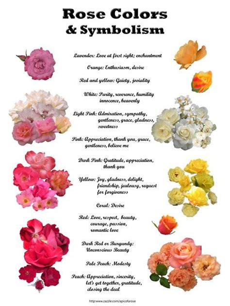 flower color meanings color meanings and symbolisms witches secret