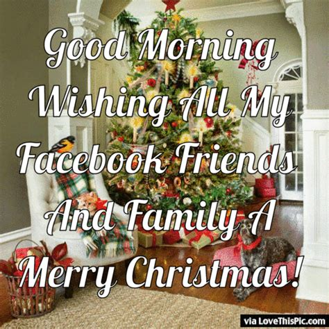good morning facebook friends  family merry christmas pictures   images