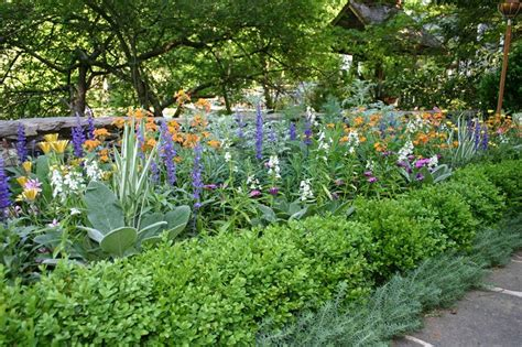 backyard planting designs garden design atlanta ga photo gallery landscaping