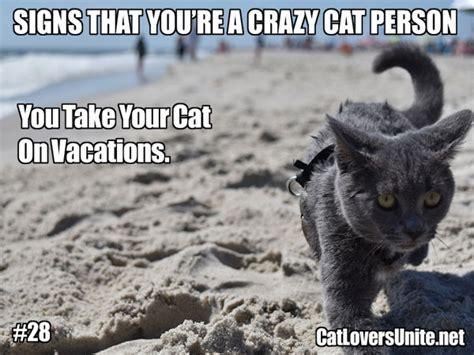 Crazy Cat Man Meme - crazy cat person 28 catloversunite net
