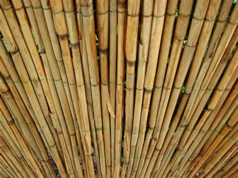 Reed Matting by Reed Mats Free Photo 1206570 Freeimages