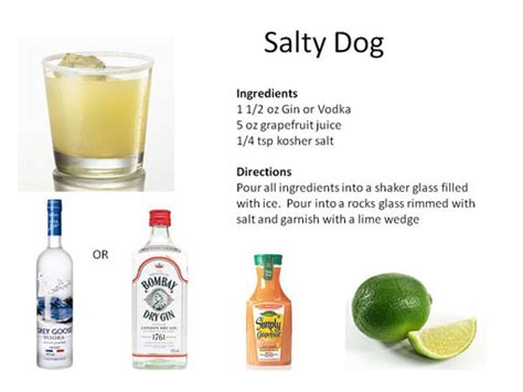 salty dogs midnight mixologist